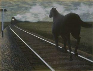 Colville_HorseTrain_54