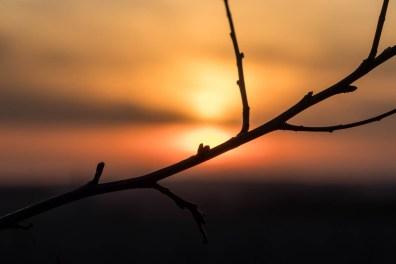 Zonsondergang knooppunt 150. Sint-Truiden. Natuur bij zonsondergang.