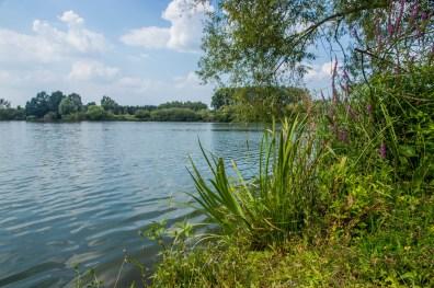 Schulensmeer. Kayakken, zeilen, surfen of SUP huren in Limburg.