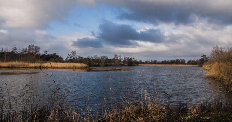 Natuurgebied Hageven in Neerpelt: ideaal voor vogelspotters