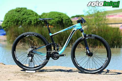 Giant Anthem X29er carbon