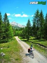 Más allá de las cumbres: TransAlpes I