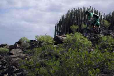 BahinaFeliz valley trail