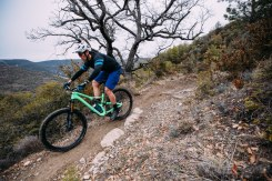 stumpjumper descenso