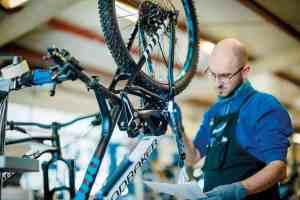 analisis sector de la bicicleta