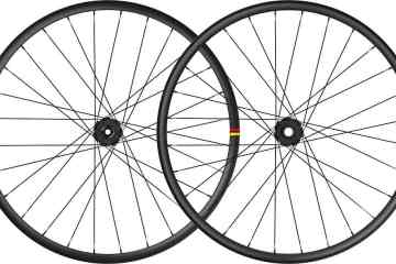 ruedas Mavic Deemax DH 2020