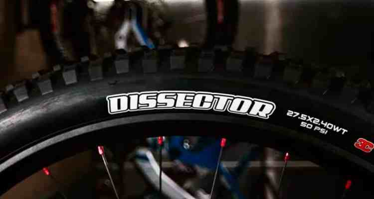 Maxxis Dissector