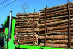 259-profesión-madera-11