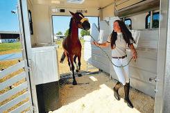 Transporte caballos