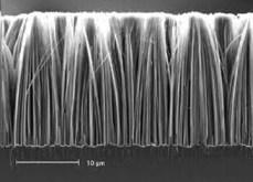 Nanowire appearance 1