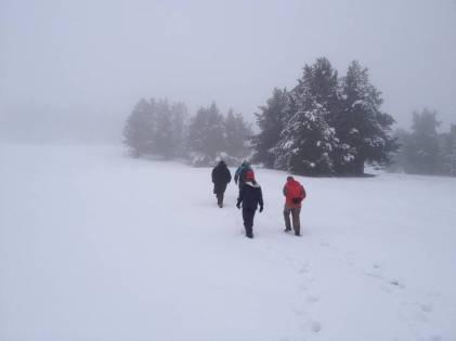 Port Ainé, Ski Pallars