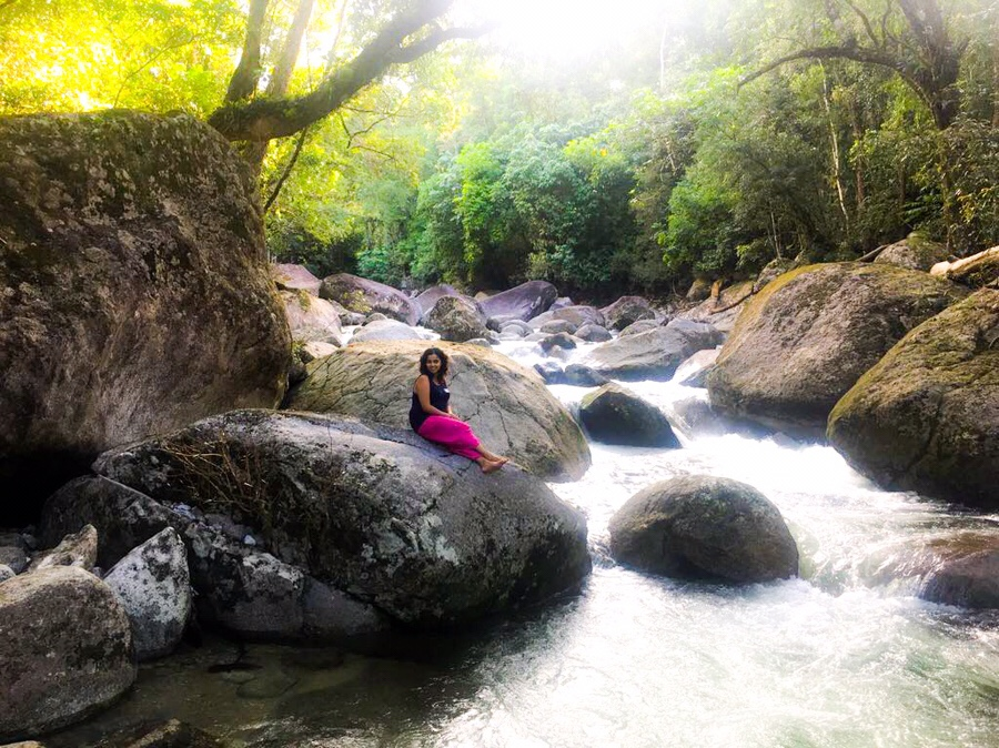 Travel Guide | Tropical North 🌴 (Queensland)