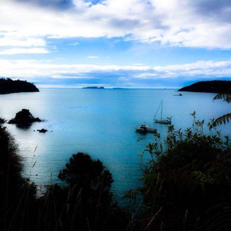 Backpacking in New Zealand - Stewart Island