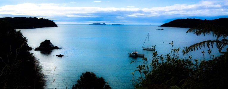 Travel Guide | Stewart Island (New Zealand's third biggest island)