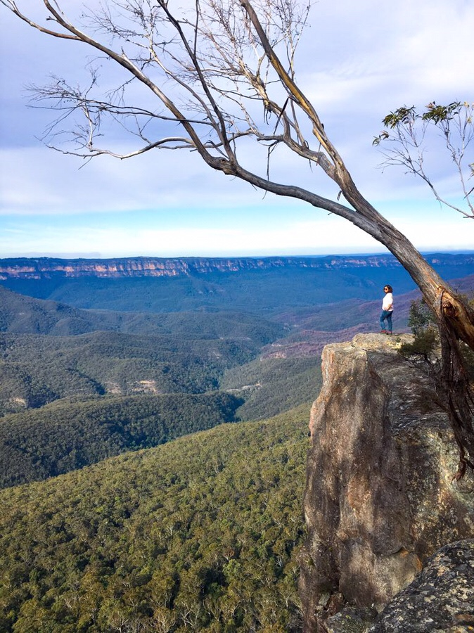 Castle Head Walk (Blue Mountains)
