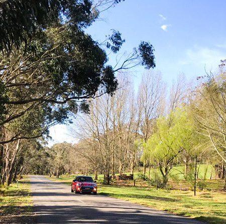 Road Trip | Fitzroy Falls, Huskisson & Nowra