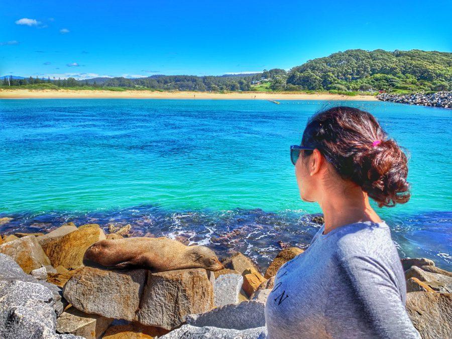 Travel Guide | Narooma & Bermagui (Australia)