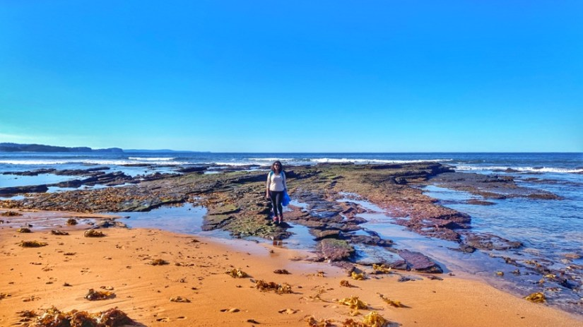Manly to Mona Vale