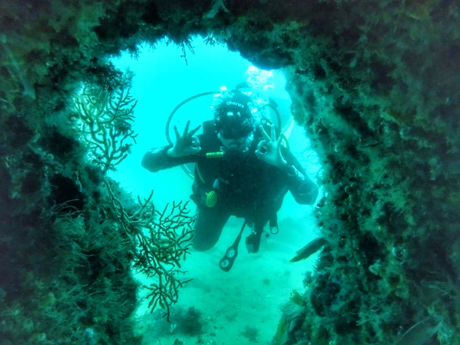 Scuba diving in Sesimbra (Portugal)