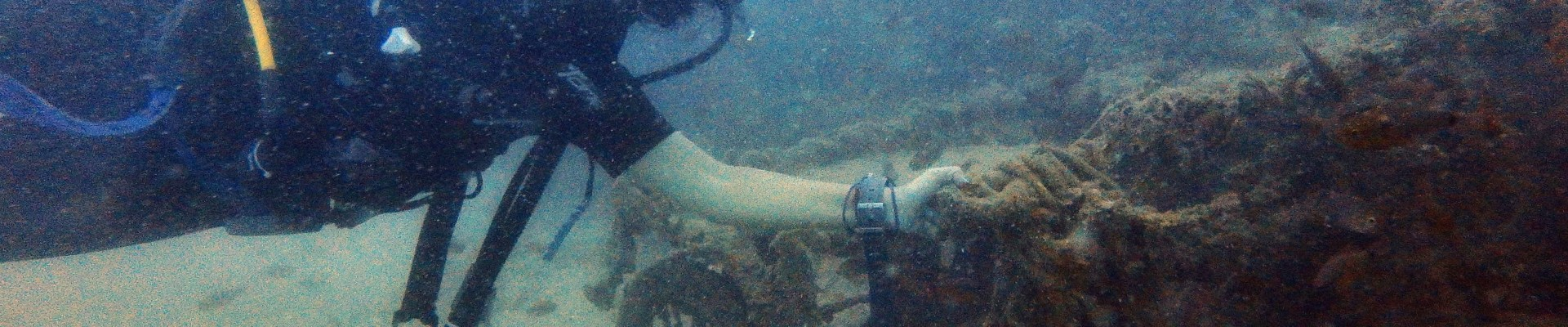 Scuba diving in Pondicherry (East Coast, India)