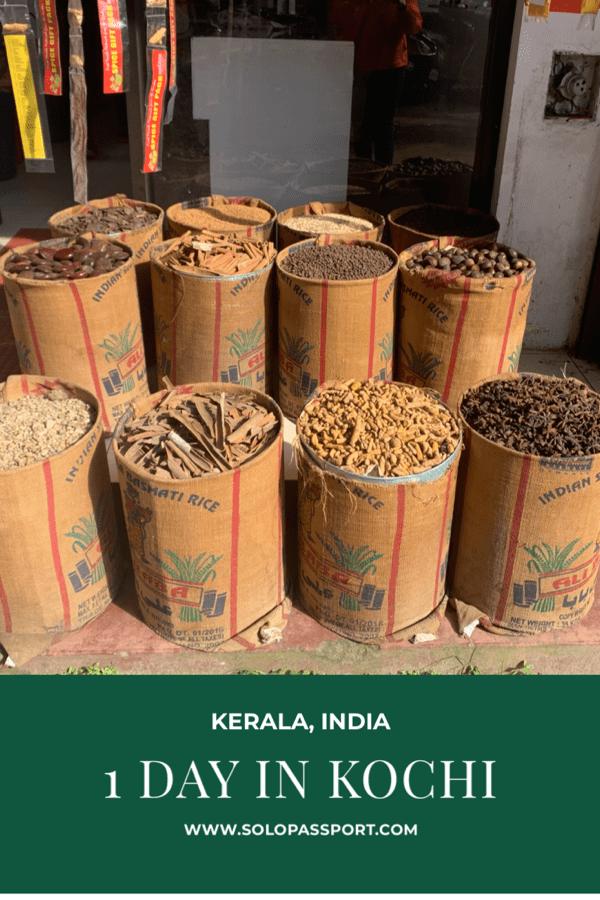 1 day in Kochi (Kerala)