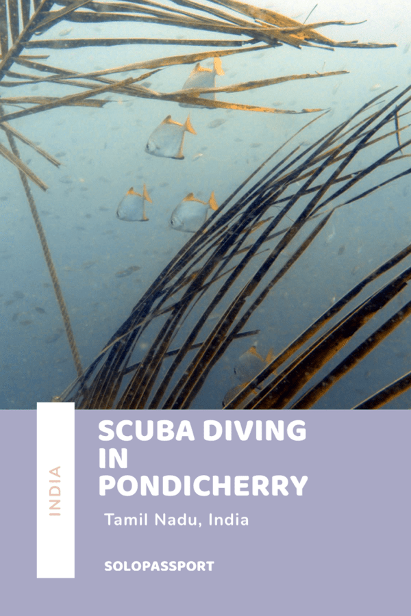 Scuba diving in Pondicherry