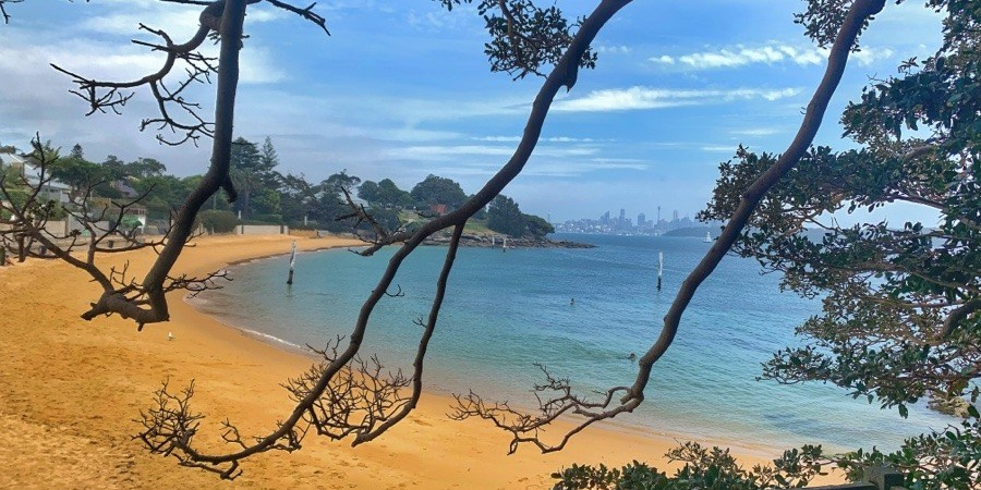 Diving at Camp Cove beach, Sydney