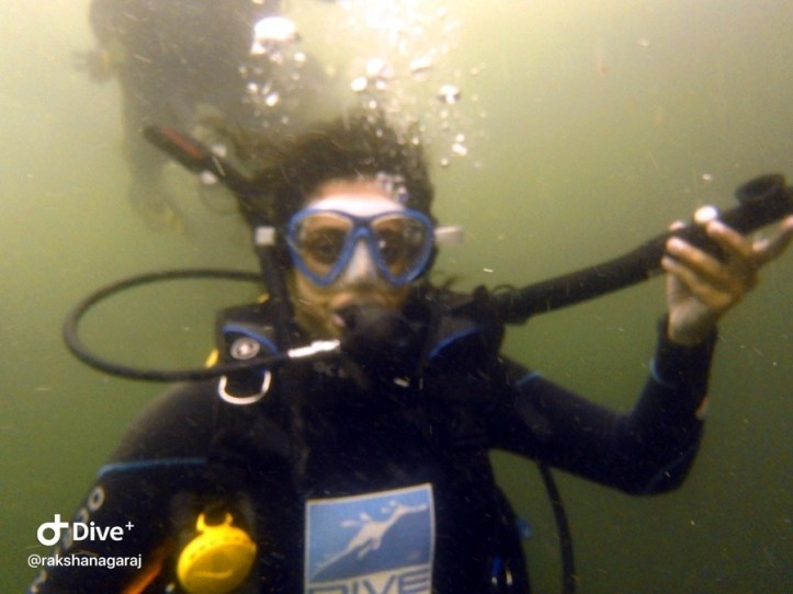 Diving at the Docks, Jervis Bay