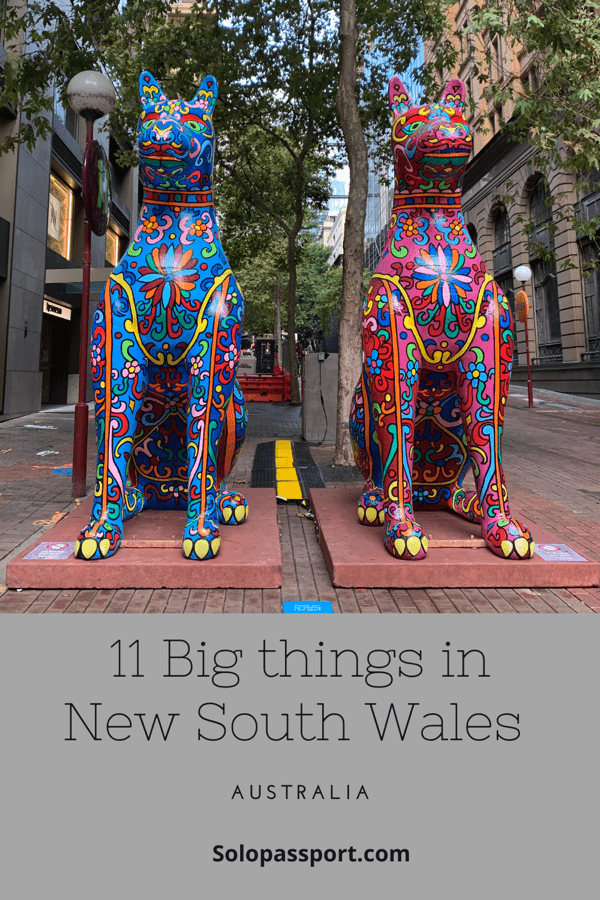 PIN for later reference - 11 Big things in NSW