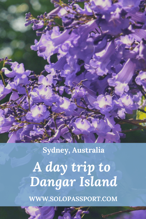 PIN for later reference - A day trip to Dangar Island