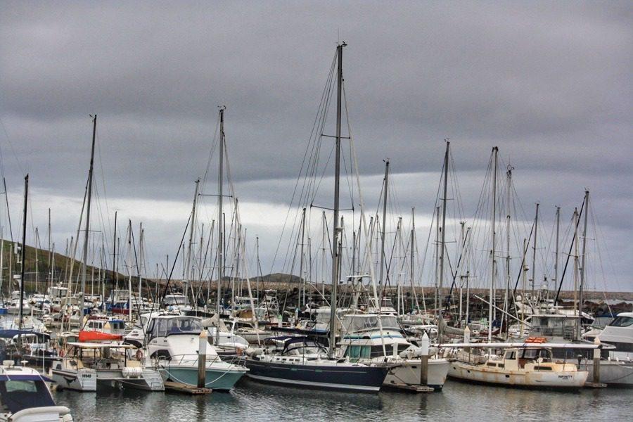 Muttonbird Island Nature Reserve Coffs Harbour