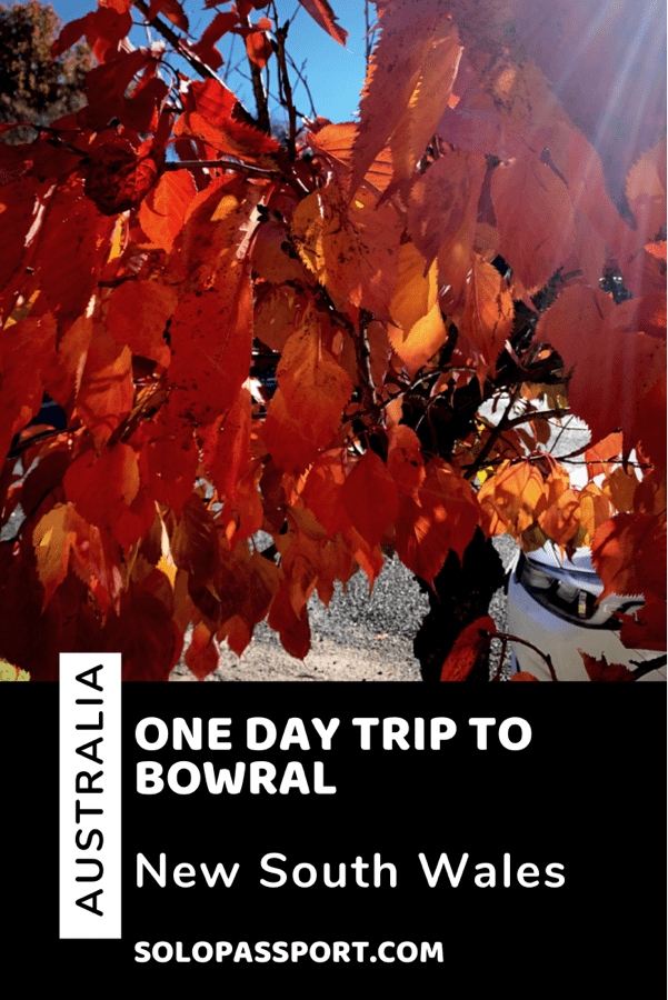 PIN for later reference - One day trip to Bowral