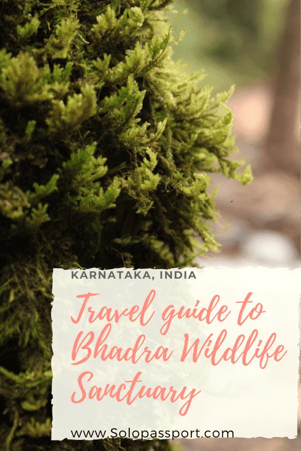 Travel guide to Bhadra Wildlife Sanctuary
