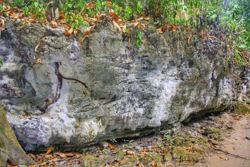 Limestone caves at Baratang island