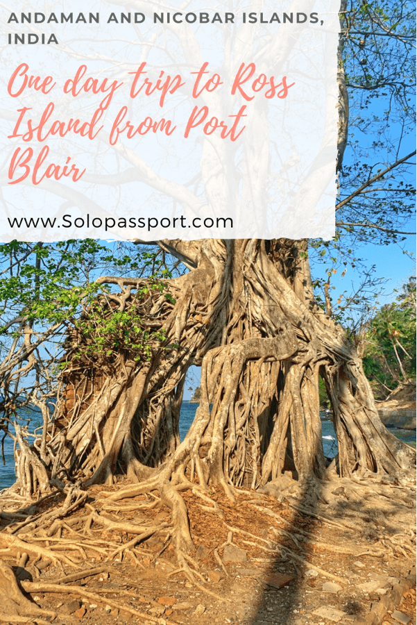 PIN for later reference - One day trip to Ross island from Port Blair