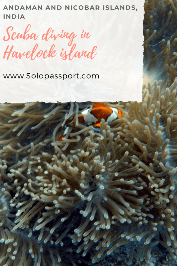 PIN for later reference - Scuba diving in Havelock island