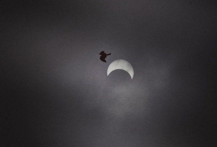 Solar eclipse at Jawaharlal Nehru Planetarium, Bangalore