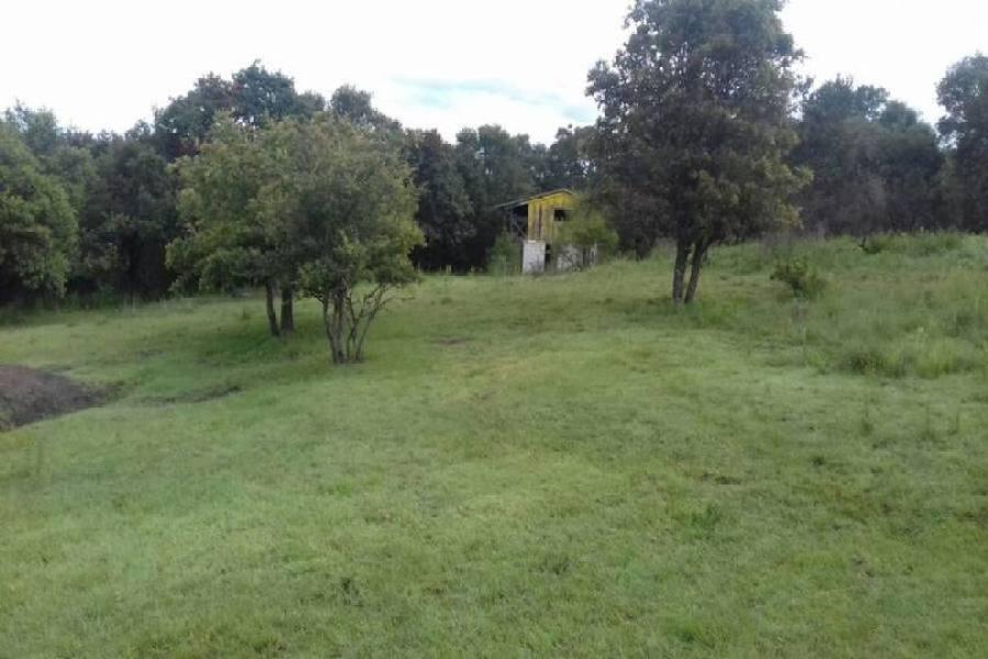 Amozoc,Puebla,México,Lotes-Terrenos,2813