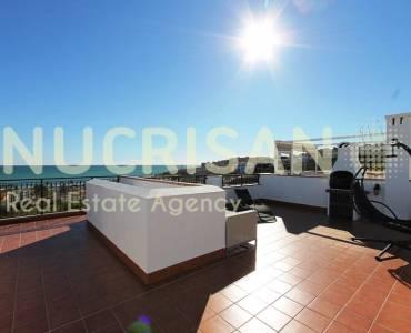 Torrevieja,Alicante,España,3 Bedrooms Bedrooms,2 BathroomsBathrooms,Bungalow,21629