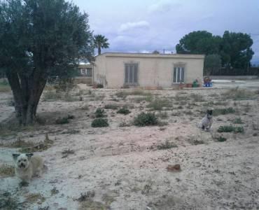 Elche,Alicante,España,3 Bedrooms Bedrooms,1 BañoBathrooms,Casas,24200