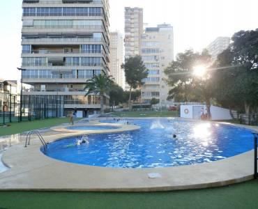Benidorm,Alicante,España,1 Dormitorio Bedrooms,1 BañoBathrooms,Apartamentos,24270
