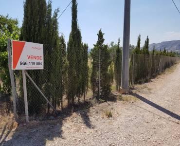 Villena,Alicante,España,Lotes-Terrenos,24499