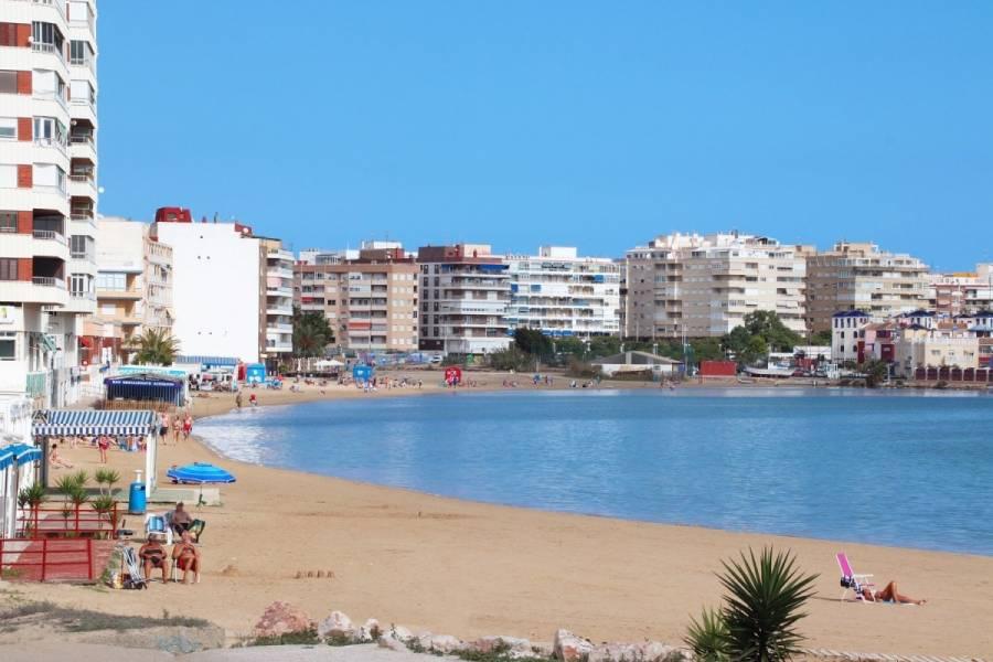 Torrevieja,Alicante,España,3 Bedrooms Bedrooms,1 BañoBathrooms,Apartamentos,24520