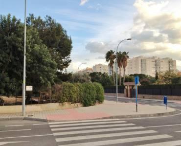 Alicante,Alicante,España,Lotes-Terrenos,24707