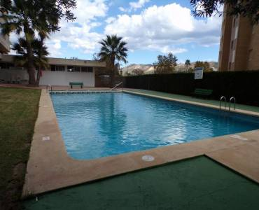 Benidorm,Alicante,España,1 Dormitorio Bedrooms,1 BañoBathrooms,Apartamentos,24730
