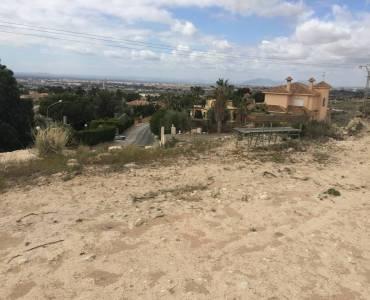 Elche,Alicante,España,Lotes-Terrenos,24778
