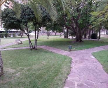 Benidorm,Alicante,España,1 Dormitorio Bedrooms,1 BañoBathrooms,Apartamentos,25749