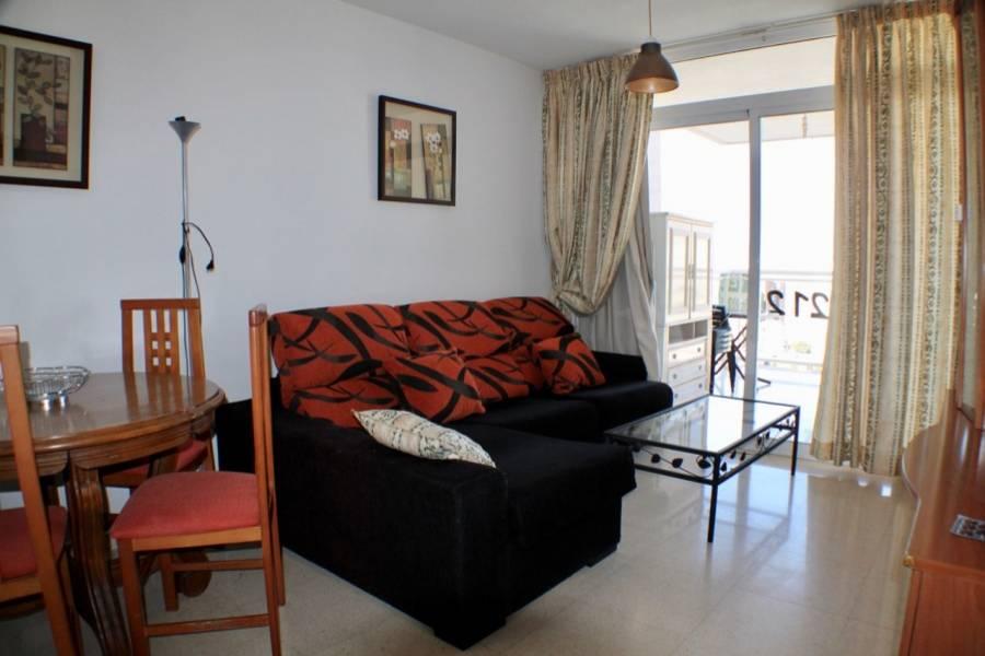 Benidorm,Alicante,España,1 Dormitorio Bedrooms,1 BañoBathrooms,Apartamentos,25829