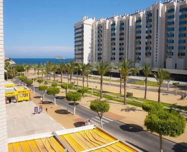 Benidorm,Alicante,España,1 Dormitorio Bedrooms,1 BañoBathrooms,Apartamentos,26678