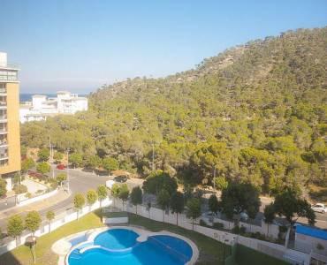 Benidorm,Alicante,España,1 Dormitorio Bedrooms,1 BañoBathrooms,Apartamentos,26679